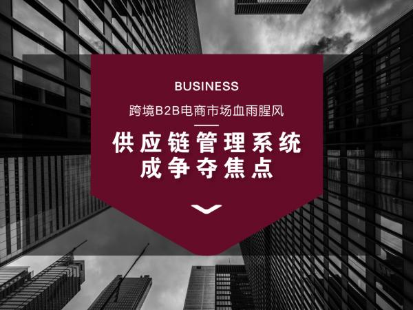 供应链管理系统在跨境电商B2B中的优势
